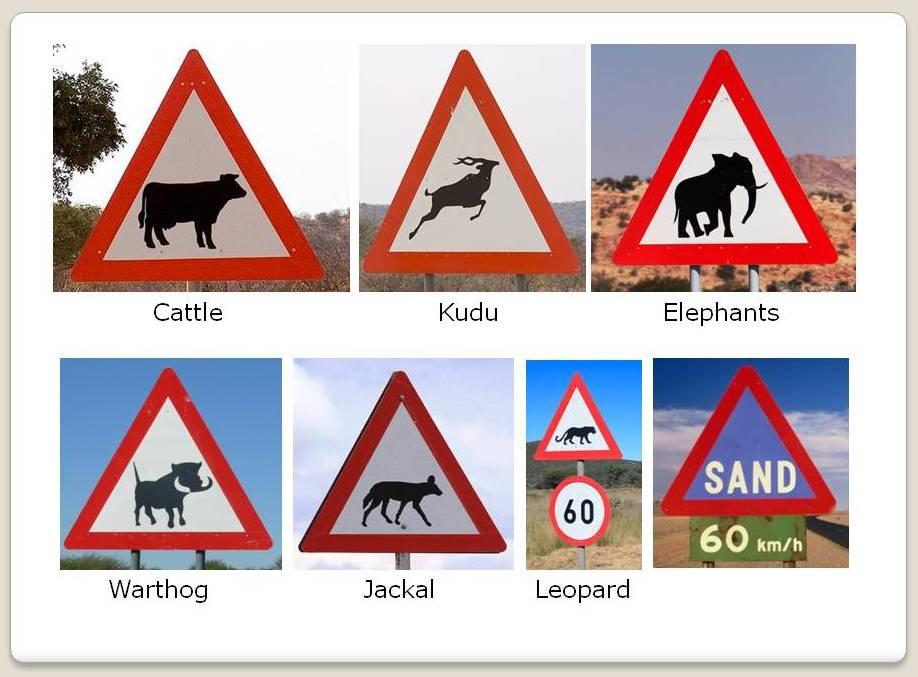 Traffic Signes Savanna Car Hire 4x4 Car Rental Namibia Car